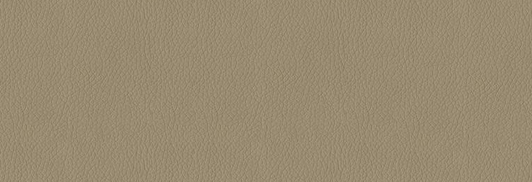 3948_Taupe