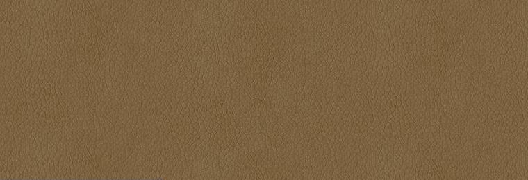6008_Sandstone