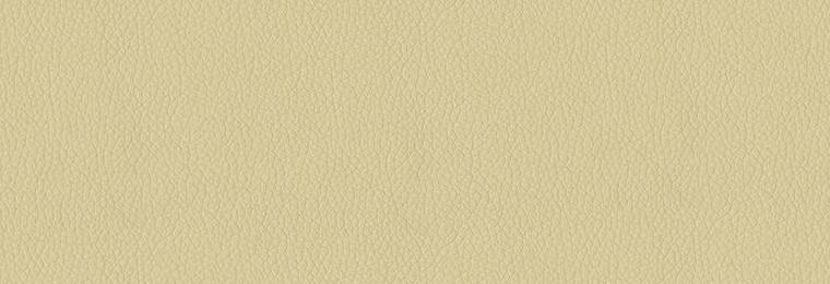 605_Parchment