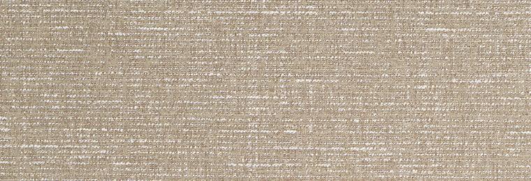 Texture Field